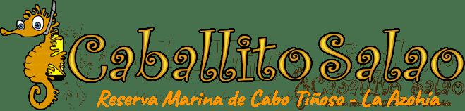 Logo centro de buceo Caballito Salao Murcia