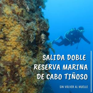Buceo Reserva Marina Cabo Tiñoso